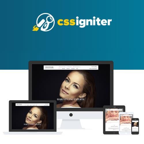 CSS Igniter The Styler WordPress Theme