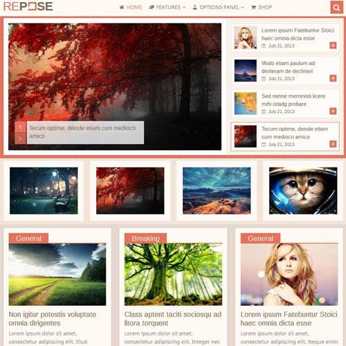 MyThemeShop Repose WordPress Theme