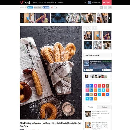 MyThemeShop Viral WordPress Theme