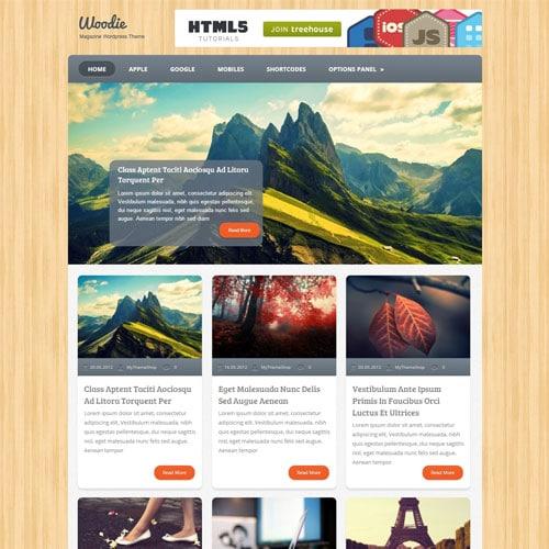 MyThemeShop Woodie WordPress Theme