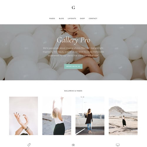 StudioPress Gallery Pro Genesis WordPress Theme