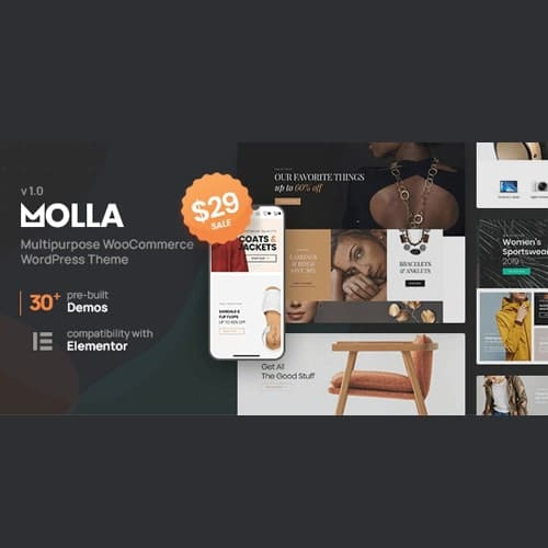 Molla Multi Purpose WooCommerce Theme